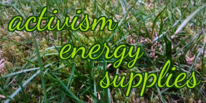 "The words ""activism energy supplies"" appear in a vivid green against a background photo of blades of grass."